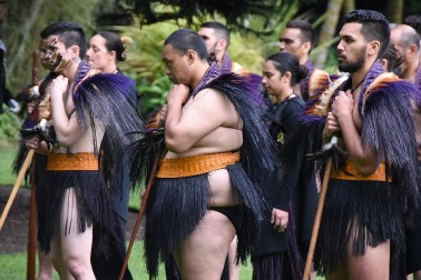 Image of warriors from the NZDF cultural party