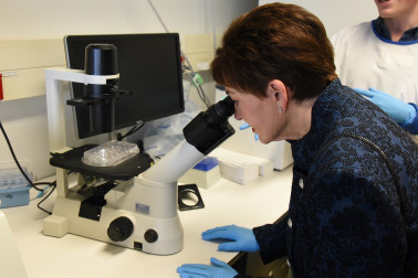 Image of Dame Patsy viewing a live neuron