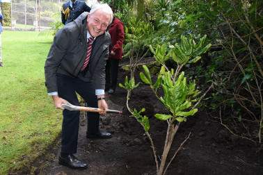 Image of Auckland Mayor Phil Goff planting a tree