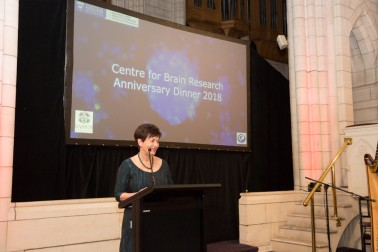 an image of Dame Patsy speaking at the dinner