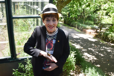 Image of dame Patsy and a Yellow Admiral butterfly