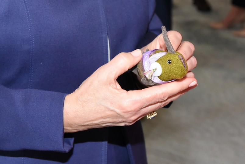 Image of a Suffrage Kiwi stuffed toy