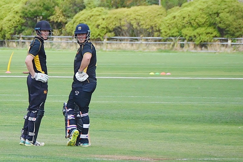 Image of two cricketers waiting