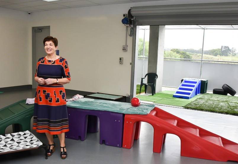 Dame Patsy in the Doggy Daycare Centre