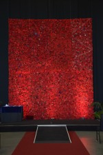 Image of the stunning backdrop of fabric poppies