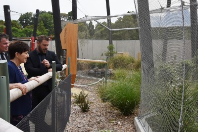 Image of Dame Patsy examining the enclosures for the endangered whio (blue duck)
