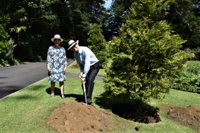 an image of Retiring Grounds Committee member Sir Rob Fenwick planting a kawaka
