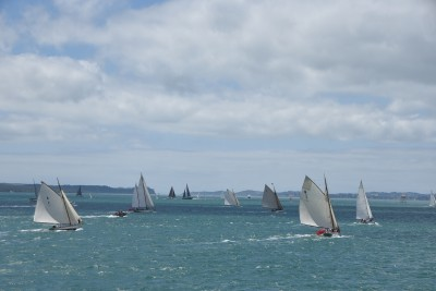 an image of Yachts taking part in the Auckland Anniversary Day Regatta