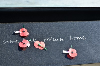 Poppies on the Tomb of the Unknown Warrior