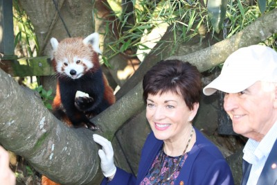 Image of Dame Patsy with a red panda