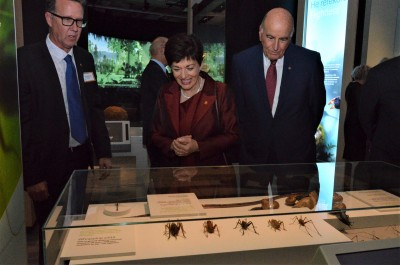 Checking out the giant weta