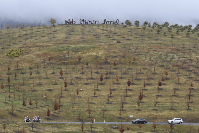 Image of The National Arboretum - 'Wide, Brown Land' sculpture