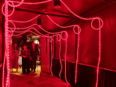 Dame Patsy Reddy and Sir David Gascoigne head down a tunnel of red lights
