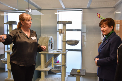 Dame Patsy Reddy and Julie Chapman looking at the new cat homes