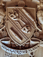 A close-up of the shield