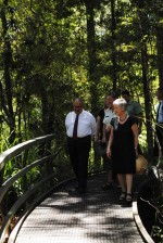 Walking the Manginangina Kauri Walk in Puketi Forest.